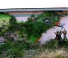 Ciudad y naturaleza se unen en estas piezas de arte urbano