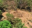 Un asteroide que pasó por la Tierra coincidió con el meteorito que cayó en Nicaragua