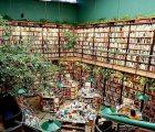 Algunas de las mejores librerías del mundo