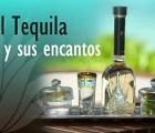 El tequila y sus encantos