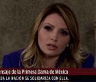 """Así se vería la Gaviota en """"La dictadura perfecta"""""""