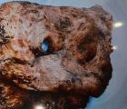 Análisis de restos de Cocula tomará hasta tres meses más