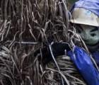 Conoce el pueblo japonés invadido por terroríficos espantapájaros