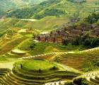 ¿Qué es la Permacultura y para qué sirve?