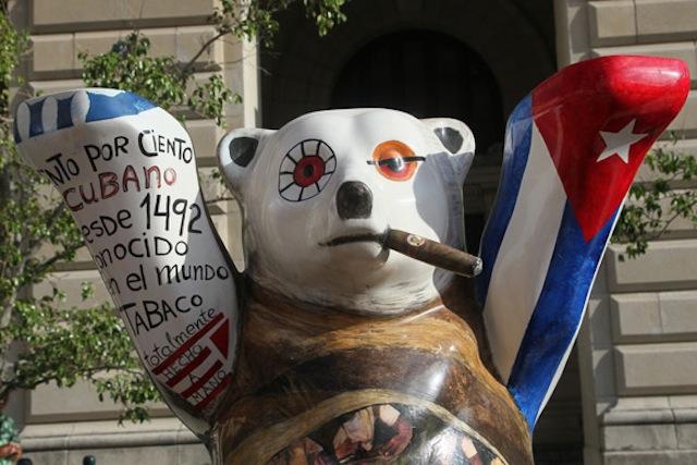El oso cubano se llama Siboney y se atribuye su arte a la artista