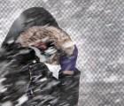 Estados Unidos se prepara para nevada histórica