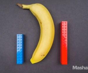 Penis Size Lego Comparison Constant-2