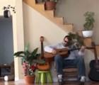 Músico maltrata a su gato... pero el karma actúa de inmediato