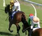 En carrera de caballos ¡final de foto!