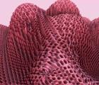 Paisajes digitales y figuras abstractas en el nuevo video de AAAA