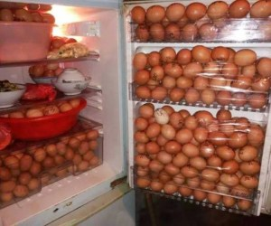 huevos robo1