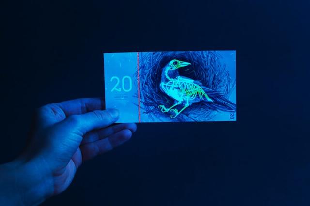 Money-Design-Concepts23