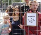 Organización pro animal pide voluntarios para encerrarlos como gallinas