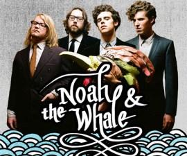 fiesta noah & the whale