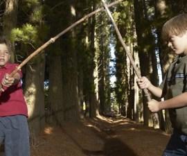 pelea de niños con una rama. el mejor jugete.
