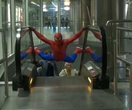 spiderman_polonia