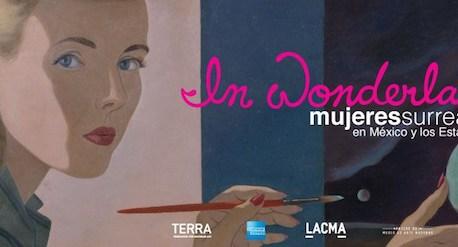 in wonderland mexico museo arte moderno mujeres surrealismo