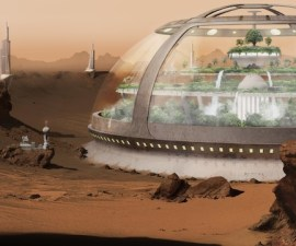 China y sus plantas en Marte