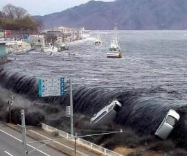 tsunami_japon_131
