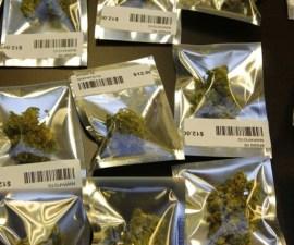 legalizacion mariguana eua colorado