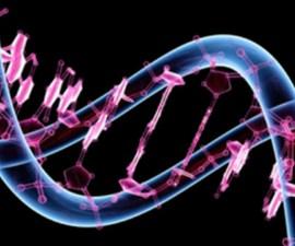 patentar genes humanos tribunal estados unidos