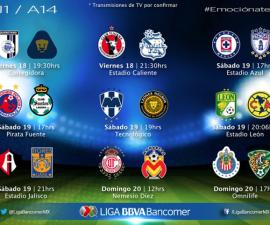 liga mx 2014