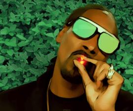 Snoop Dogg - Bush