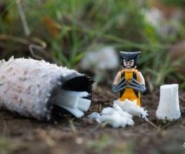 lego-figures-photography-samsofy-pardugato-4-136625