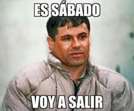 memes chapo2