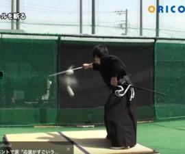 Samurai-Bola-Beisbol