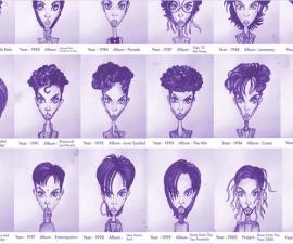 prince-peinados-0