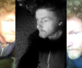 Orla wren