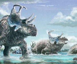 titimosaurio
