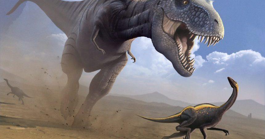 t-rex-dinosaurios-emplumados-7