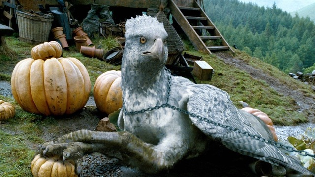 harry-potter-buckbeak