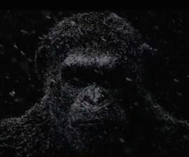 El simio Caesar