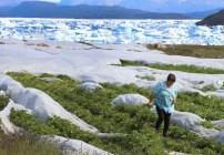 groenlandia-calentamiento-global-deshielo