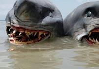 Tiburón de dos cabezas