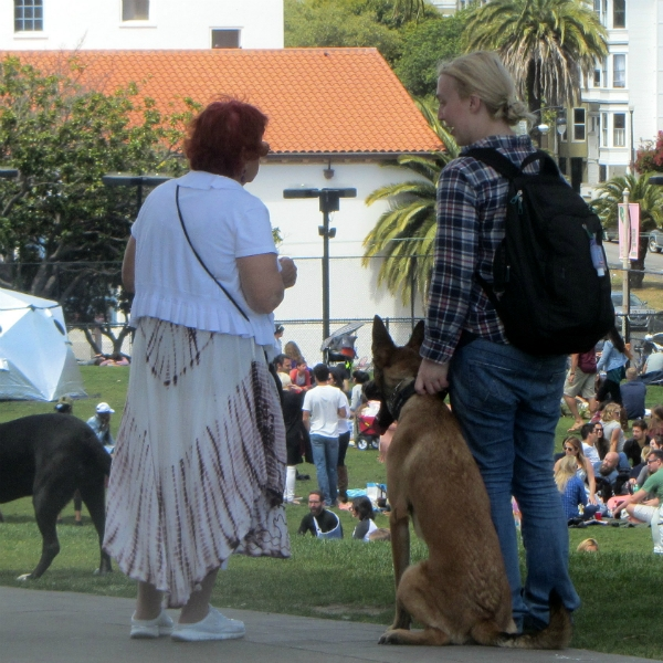 KATHY WITNESSES AT DOLORES PARK.