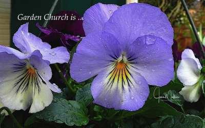 """GARDEN CHURCH"""