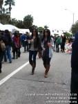 coconutgroveartfestival21410-106