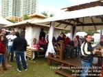 coconutgroveartfestival21410-140