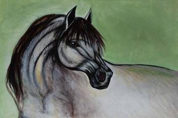 Alex-Cardoso-Horse