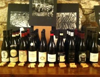 td-wine-seminar