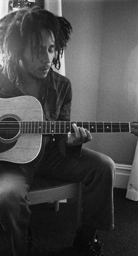 Marley-web-image-cropped