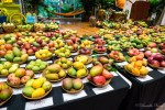 Mango-Festival-34