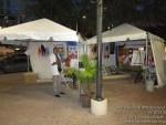 marybrickell artsfestival091814-021