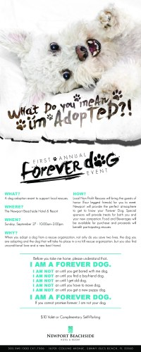 Forever-Dog-Event