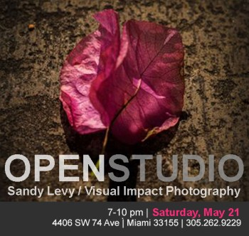Sandy-Levy-May-2016-Flyer-Revised-copy