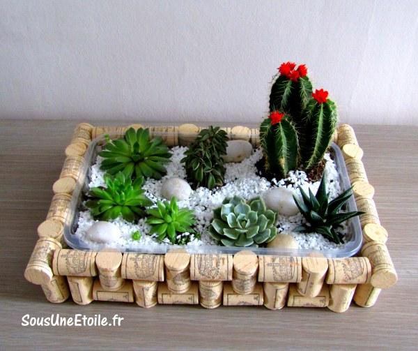 DIY bouchons liege plante